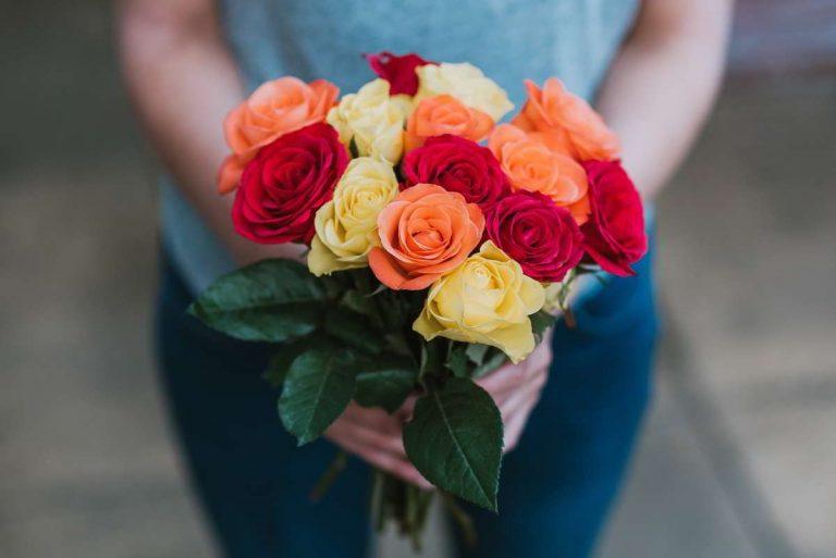 regalar-rosas-en-san-valentin